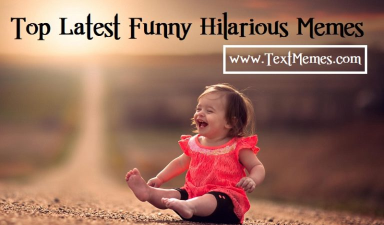 Best Hilarious Memes That Make You Happy in Your Life