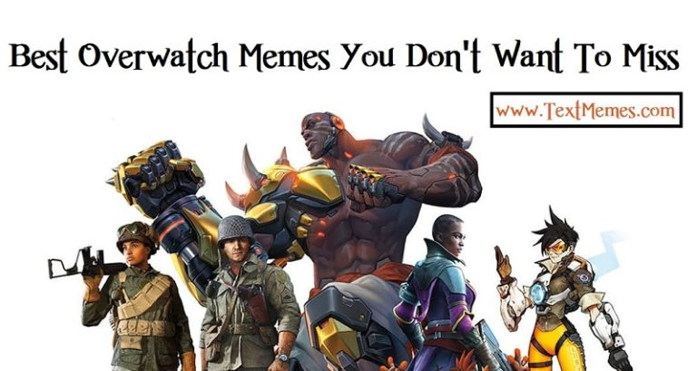75+ Best Overwatch Memes You Should Check Out in 2018 | Text